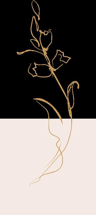背景装飾の植物シルエット